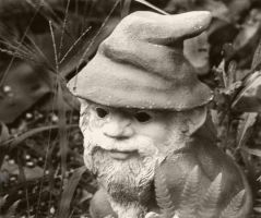 Gnome by Aliandre