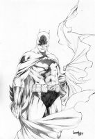 Batman_02 by leonartgondim