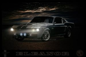 Eleanor - Reto Saluz by RetoSaluz