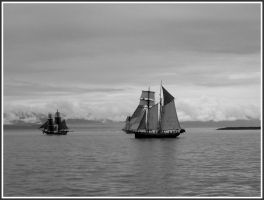 Victoria's Parade of Sails 001 by titinavy