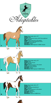 Closed - MMS Foal Adoptables by AliceYung