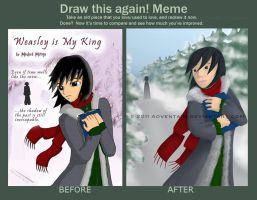 Before and After Meme by adventaim