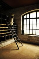 ladder by FMpicturs