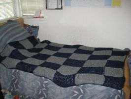 Checkered Blanket by crazynina