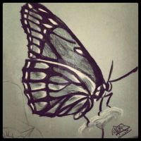 Monarch Butterfly by MagaMaguita