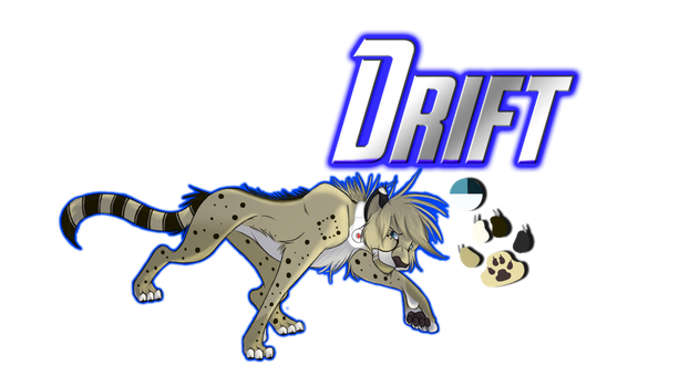 Drift Reference by lionkinggirl2009