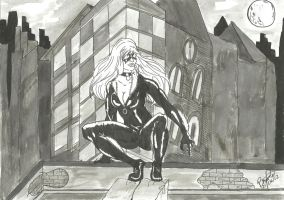 Blackcat on the roof by libregon