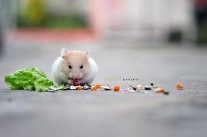 """Chiky say : """"Time to eat.."""" by deMinegraphy"""