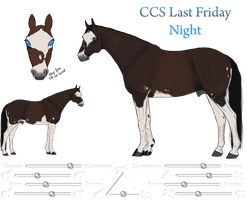 CCS Last Friday Night Ref by Cerulean-Sky-Stables