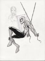 Spidey Web Head by rantz