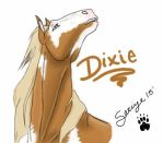 Miss Dixie  by SariyeWolf