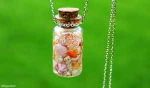 shells in a bottle by RhapsodyArt