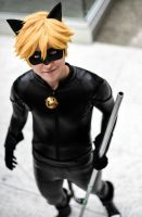Chat Noir- Cat Class by twinfools