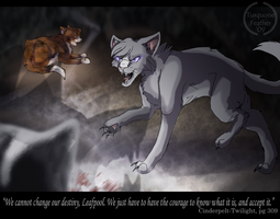 Cinderpelt's solemn hour by TurquoiseFeather