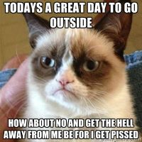 pissed off grumpy cat by brandonthebeast34
