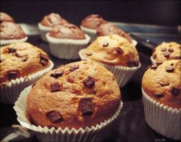 muffins by granula