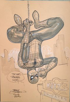SpiderMan SDCC 2013 by TerryDodson