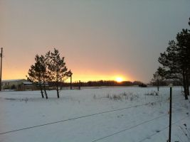 Snowy Evening Sunset 1 by dcrods
