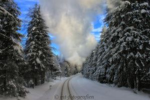winter wonderland in the resin 11 by MT-Photografien