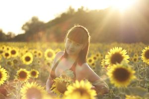sunflower by Anna1Anna