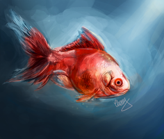 Fish Study by lalitterboxes