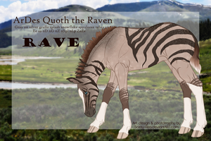 6346 | ArDes Quoth the Raven by sazzy-riza