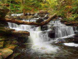 Ricketts Glen State Park 73 by Dracoart-Stock