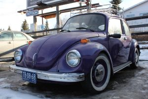 Purple Bug by KyleAndTheClassics
