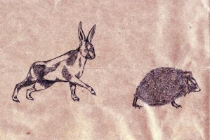 hare and hedgehog by aerienaut