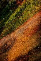 Dirt road at dusk by Mackingster