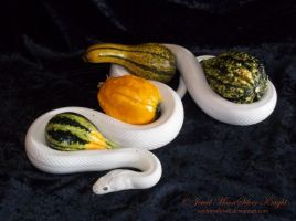 CRESCENT AND GOURDS 2 by NocturneJewel