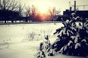 Winter Time! by Peterdoesphotography
