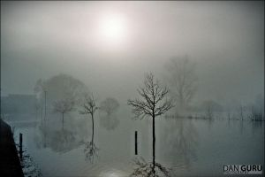 Bavarian Floods - Fog by RoqqR