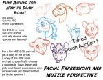Fund Raising Dutch Auction Expressions Perspective by lady-cybercat