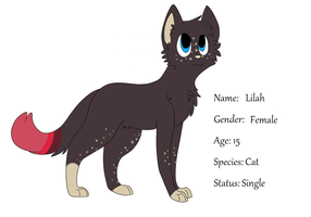 Lilah ref sheet 2013 by Ahe-Pup