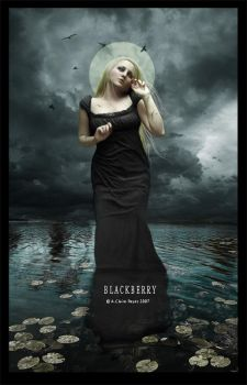 Blackberry by Eireen