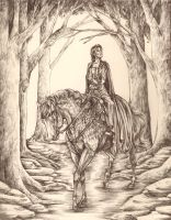 lady grey and her rider by cincala