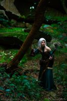 Dragon Age: Origins - Elvhenan 3 by HayleyElise