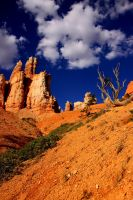 Queen's Garden, Bryce Canyon 1 by Caloxort