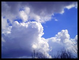 Great cloud by puma-lc
