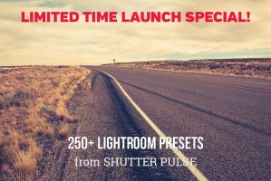 250+ Professional Lightroom Presets by linspace