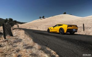 Corvette Stingray 1 by notbland