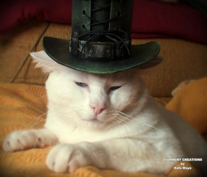 Hugo Topcat Tophat by Diarment