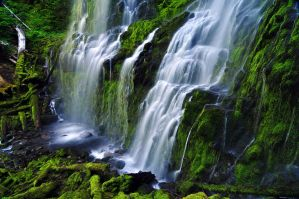Proxy Falls, Study 2010-1R by greglief