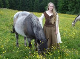 Shieldmaiden Outfit 4 by Lady--Eowyn