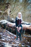 Dead Winter Reigns by Silverrr-official