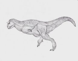 The Improbable Carnotaurus by TheMacronian