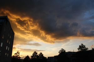 12-07-06 The Sunset 4 by Herdervriend