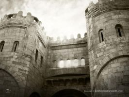 Cairo Gate by abd-ELRAHMAN