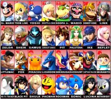 My Smash 4 Roster by Xtremesonic